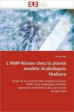 L Amp-Kinase Chez La Plante Modele Arabidopsis Thaliana:  Une Etude Semantique de La Totalite
