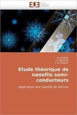 Etude Theorique de Nanofils Semi-Conducteurs:  Le Role Des Comportements de Sante
