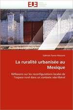 La Ruralite Urbanisee Au Mexique:  Etancheite Des Toitures de Terre