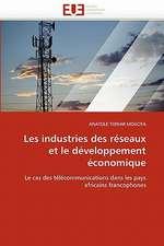Les Industries Des Reseaux Et Le Developpement Economique:  Logiques Sous-Jacentes
