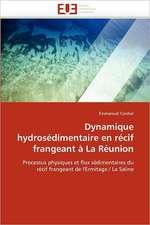 Dynamique Hydrosedimentaire En Recif Frangeant a la Reunion:  Metallurgie de La Periode Thule
