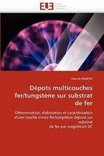 Depots Multicouches Fer/Tungstene Sur Substrat de Fer:  de La Perception a la Gene