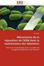 Mécanismes de la réparation de l'ADN dans la maintenance des télomères