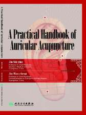 A Practical Handbook of Auricular Acupuncture:  Basic Nomenclature of Chinese Medicine