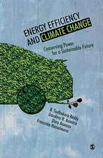 Energy Efficiency and Climate Change: Conserving Power for a Sustainable Future