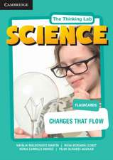 Charges that Flow Flashcards
