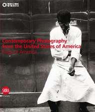 Twentieth-Century American Photography:  Flags of America