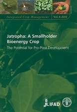 Jatropha:  The Potential for Pro-Poor Development