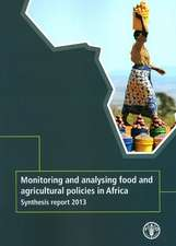 Monitoring and Analysing Food and Agricutural Policies in Africa:  Synthesis Report 2013