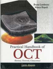 Lumbroso, B: Practical Handbook of OCT