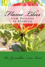 Flame Lilies:  From Deventer to Rhodesia