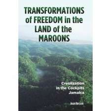 Transformations of Freedom in the Land of the Maroons:  Creolization in the Cockpits Jamaica