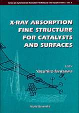 X-Ray Absorption Fine Structure for Cata